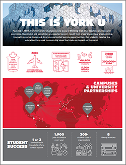 York U at a Glance 2017