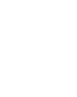 York University has 7,000 faculty and staff